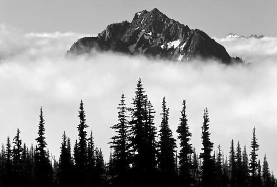 «Παγκόσμια μέρα Βουνού» S.O.S. ΒΟΥΝΑ, ΘΑΛΑΣΣΕΣ, ΠΟΤΑΜΙΑ